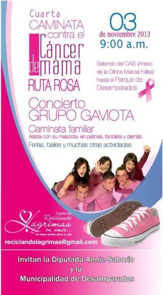 Afiche Ruta Rosa