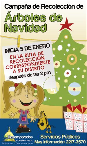 Campaña de Recolección de Árboles de Navidad Desamparados